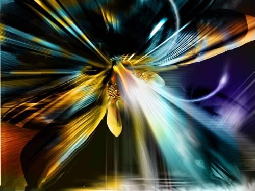 красивые картинки скорпионов